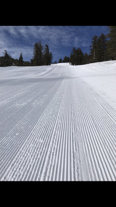 Heavenly Mountain Resort - Early Morning Corduroy Speed Laps!!  - © Bradly's iPhone