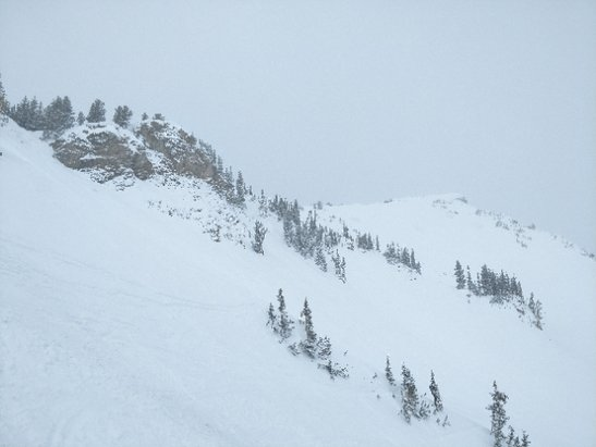 Alta Ski Area - epic. waist to chest deep - © anonymous