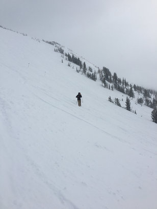 "Jackson Hole - I don't know what they mean by 4"". In most of the upper bowls it's 6""+. Great skiing. Cloudy but the powder is so good who cares  - © Nor'skier"