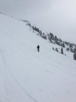 null - © Nor'skier