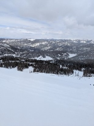 Wolf Creek Ski Area - Powder from the top to the bottom!! - © anonymous