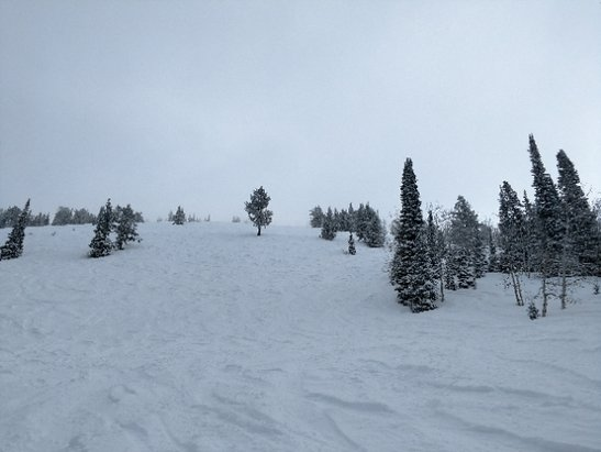 Grand Targhee Resort - sun came out for the afternoon. nice soft snow.  - © anonymous
