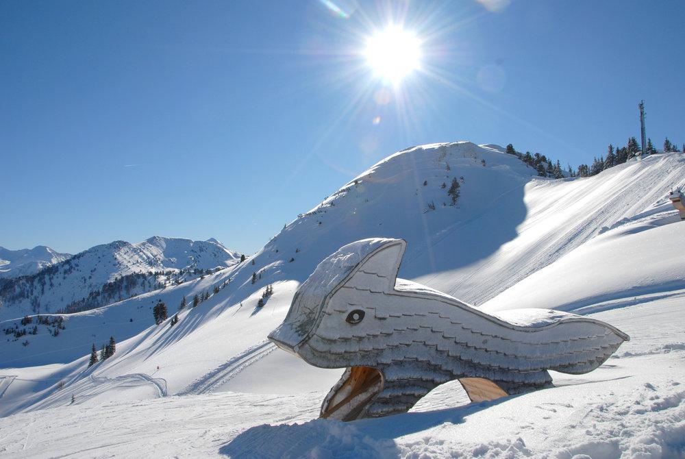 Skifahren auf der Riesneralm - © © Riesneralm Bergbahnen/Erwin Petz
