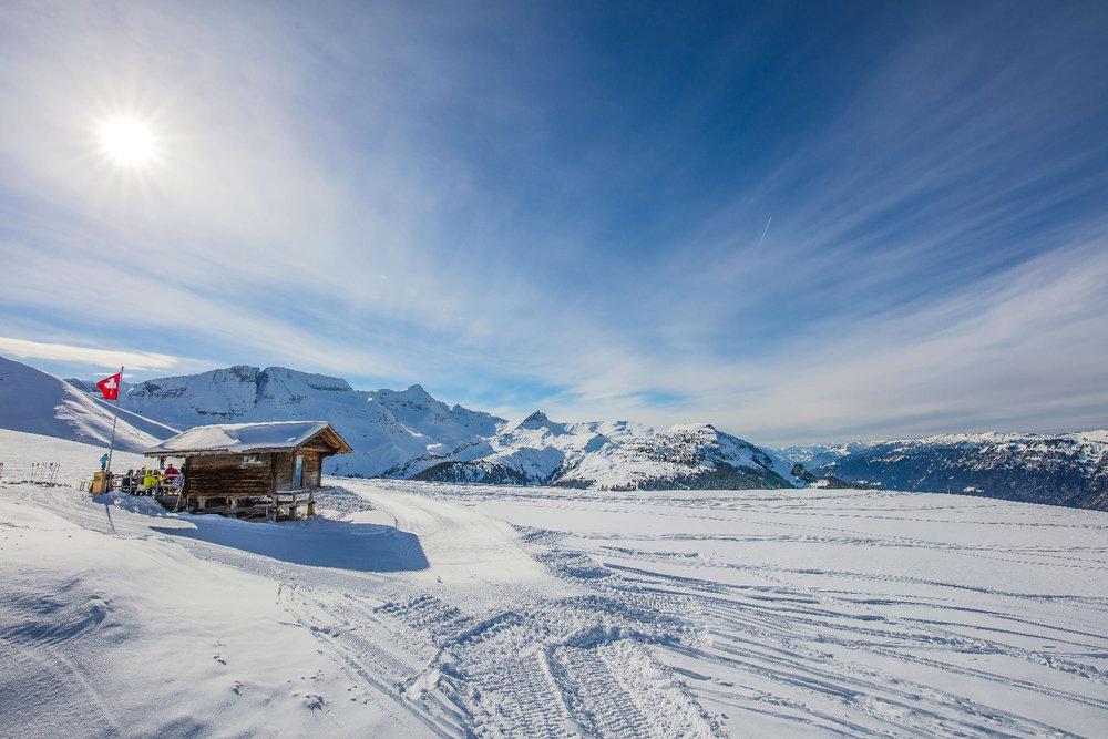 Traumhaft schöner Ausblick im Skigebiet Brienz - Axalp - Windegg - © Sportbahnen Axalp Windegg AG