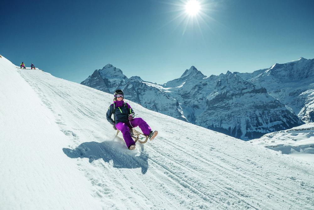 Schlittenfahren am Faulhorn im Skigebiet Grindelwald-First - © Jungfrau Region