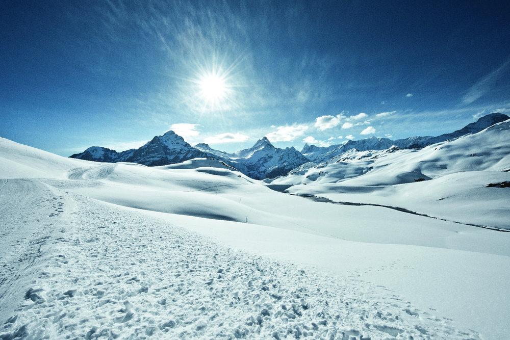 Grindelwald First: Blick auf Wetterhorn und Schreckhorn - © Jungfrau Region