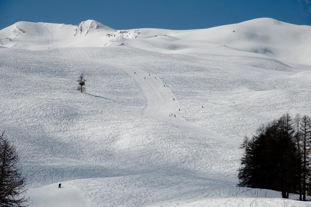 Le domaine skiable de Sainte Anne la Condamine offre de très nombreux espaces dégagés en bord de pistes pour laisser ses traces dans la poudreuse sans gros risque... - © Manu Molle