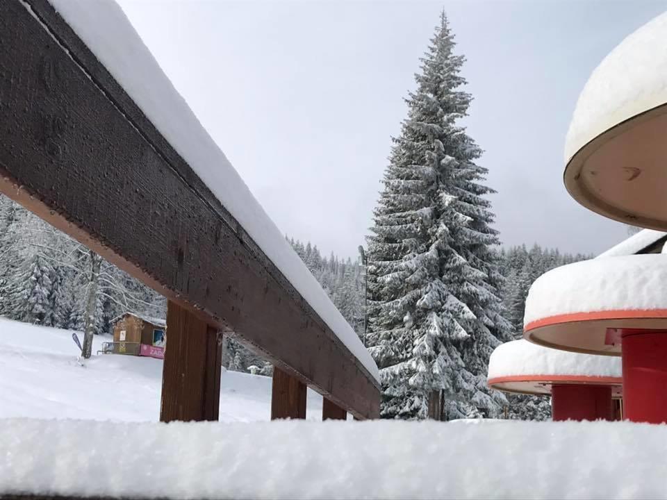 Ski areál Zadov, Šumava (27.11.2018) - © Ski areál Zadov | facebook