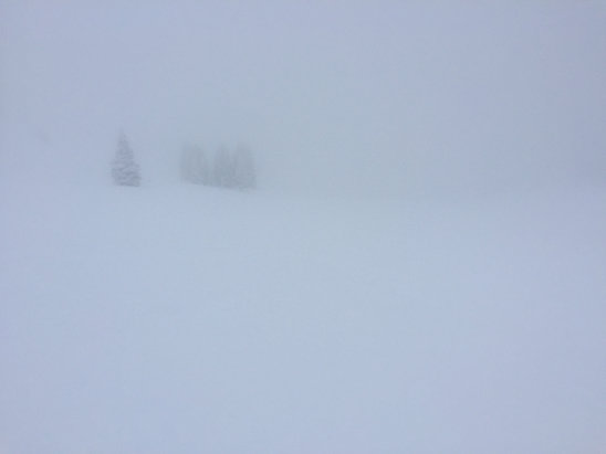 Sunshine Village - Great snow but heavy fog at the top today.  - © iPhone (3)