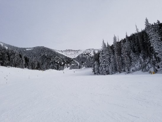 Arizona Snowbowl - only few trail open but really good new  snow and not crowded at all - © Bo