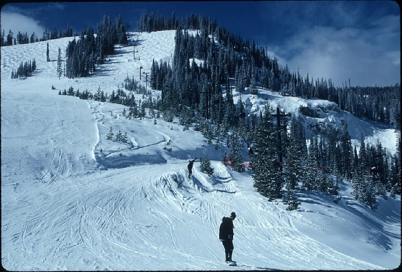 Lone skier at Lost Trail, Montana.