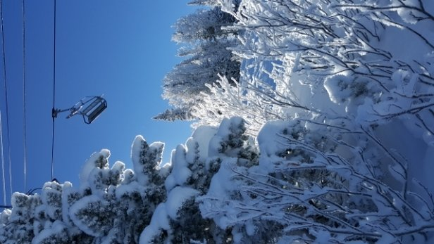 Steamboat - Bluebird day  - © Mtnequipage