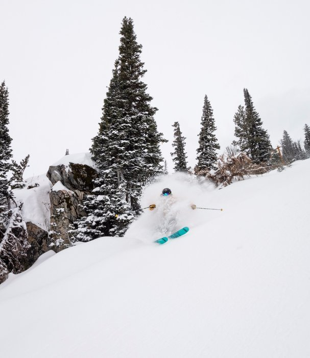 Tough luck, buddy, but you take what you can get on opening day. - © Jackson Hole