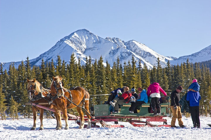 Sleigh rides offer fun for the whole family. - © Visit Telluride/Ryan Bonneau