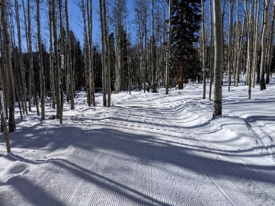 Red River - Beautiful day skiing today. Snowed yesterday morning. Supposed to snow all night tonight.  - © anonymous