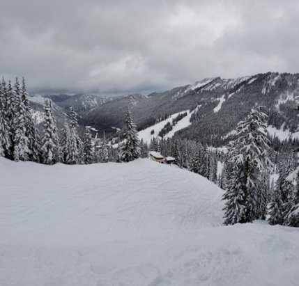 Stevens Pass Resort - The very top is nice, but heavy elsewhere. It should ski out nice ⛷❄ - © Mr. Powpow