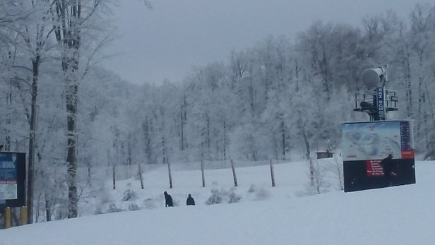 Winterplace Ski Resort - this was the view on Jan 15.  black diamonds open..I stayed on Cascade and it was very good.  - © r.g. princeton