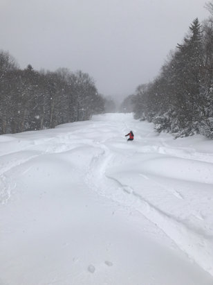 Sugarbush - Powder on castle rock early am.  Great snow and conditions all over. - © Craig i phone 5s