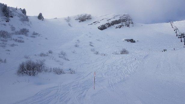 Praz de Lys Sommand - neige au top  - © anonyme