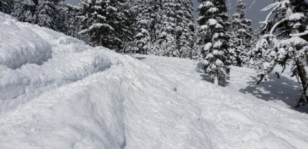 Squaw Valley - Alpine Meadows - sooo deep and so fun!  - © anonymous