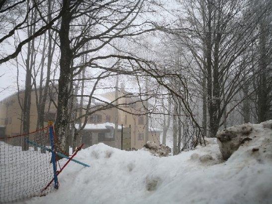 Monte Amiata - Se potete evitare il week end causa sovraffollamento...per il resto la neve non manca - © Anonimo