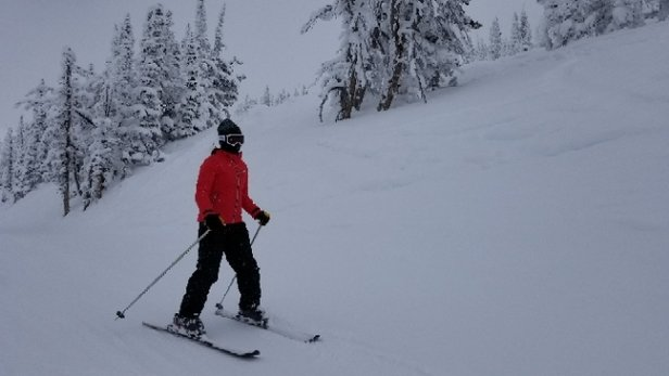 Grand Targhee Resort - cold but nice, light snow. wide open. - © anonymous