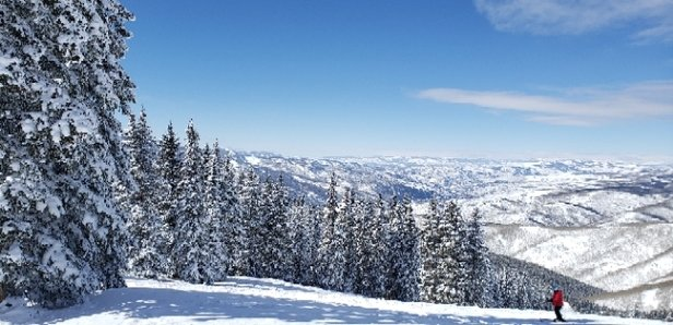 Vail - Great day at Vail.. - © anonymous