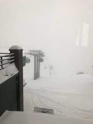 Steamboat - My god so much snow!! A foot of powder this morning and another foot coming.  If you like pow this is the ultimate! - © Michael's iPhone