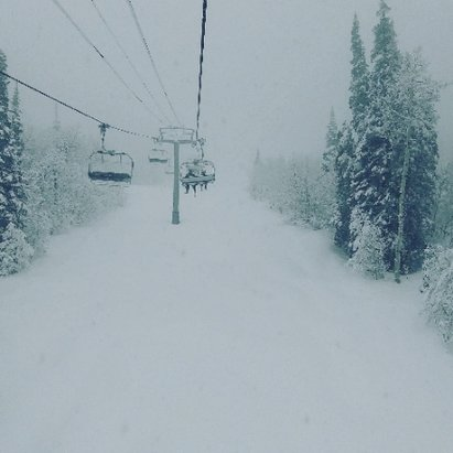 Powderhorn - 12 inches fresh this morning, awesome powder day! - © snowmanshreds