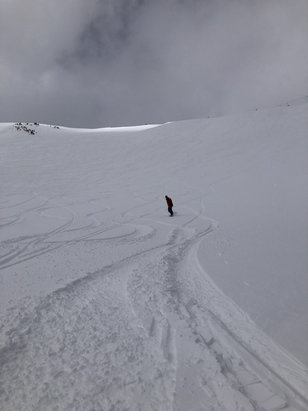 Breckenridge - 5/1/19 was an amazing pow day. Knee deep snow off whales tail and absolutely no one there.    - © iPhone