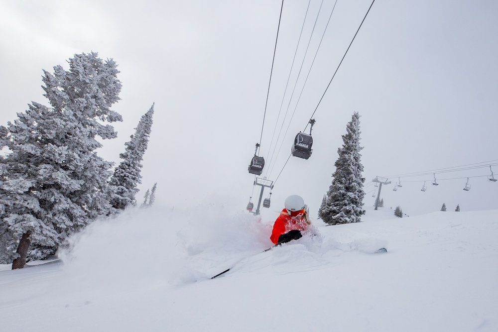 Aspen Snowmass relished the first 31 days of 2019 with multiple storms and feet of fresh powder. - © Aspen Skiing Company