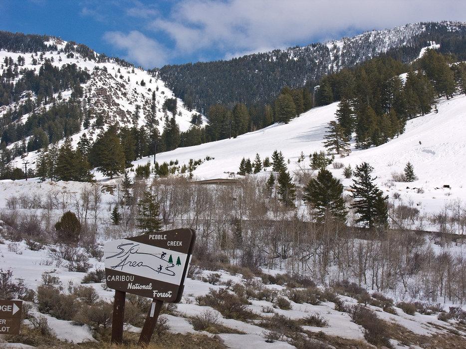National forest at Pebble Creek, Idaho