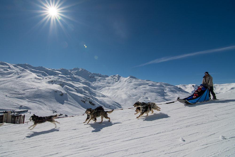 Outre les plaisirs de la glisse (ski, snowboard...) Val Thorens propose également des activités à pratiquer en dehors des pistes dont les balades en chiens de traineaux... - © T. Loubere / OT Val Thorens