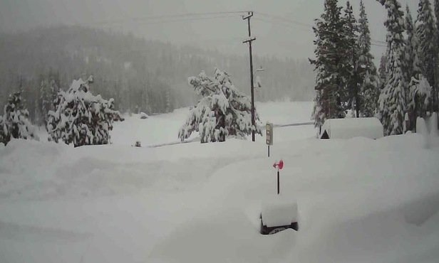 Squaw Valley Alpine Meadows - Please wait until it's safe. Slopes are sliding all over.  - © Buzzzy