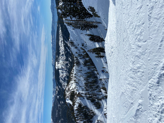 Squaw Valley Alpine Meadows - Excellent conditions at Squaw with no line more than 10 minutes all day Friday.  More cars in the lots than skiers in the slopes. Photo from top of K22.   - © P Daddy