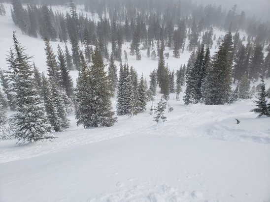 Mammoth Mountain - Awesome day. More snow than forecasted. About a foot of softness yesterday and it keeps coming down. It will be good riding this coming weekend. - © J. P. E.