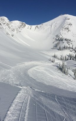 Fernie Alpine - Great powder up there, but getting slushy in the afternoon at the bottom.  - © Tyler