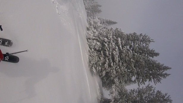 Arizona Snowbowl - Another epic powder day...03/24/2021  - © Sparky