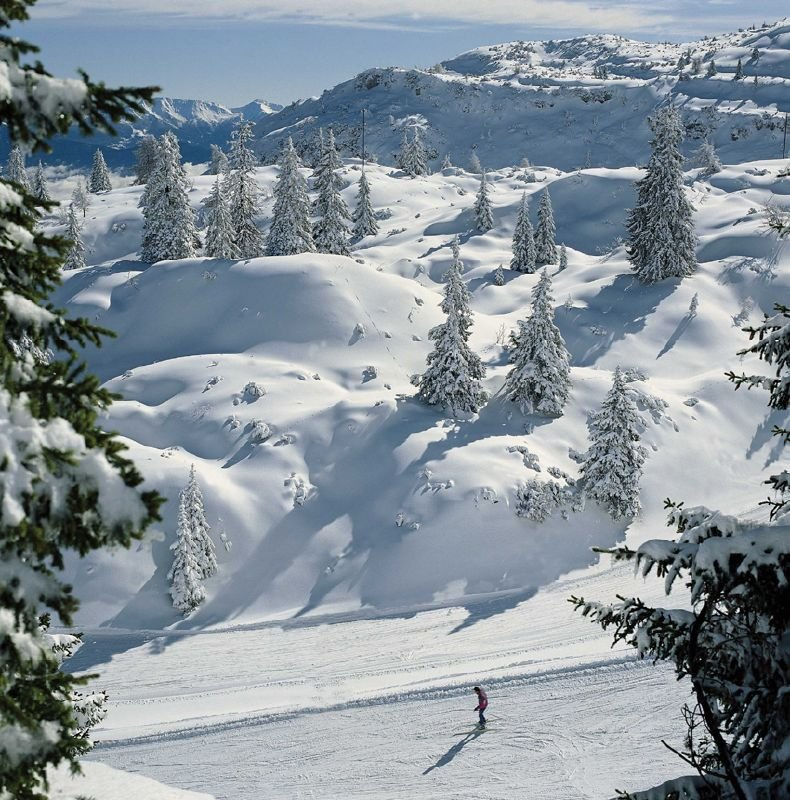Skier on slopes surrounded by fresh snowfall in Andalo