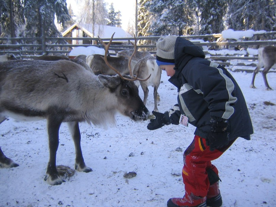 Getting to know the locals in Levi, Finland - © Levi Tourism