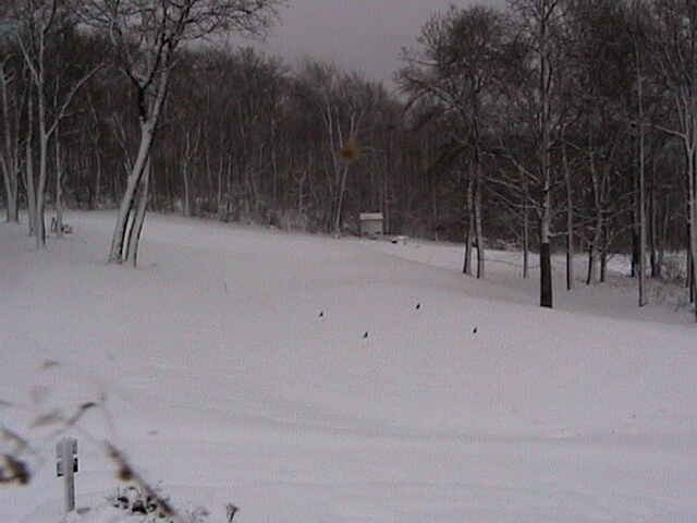 Snowfall at Hidden Valley, PA. Photo Courtesy of Hidden Valley Resort/Facebook