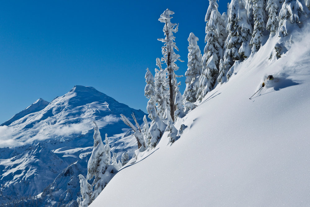 Sam Cohen skiing opening week at Mt. Baker - © Grant Gunderson
