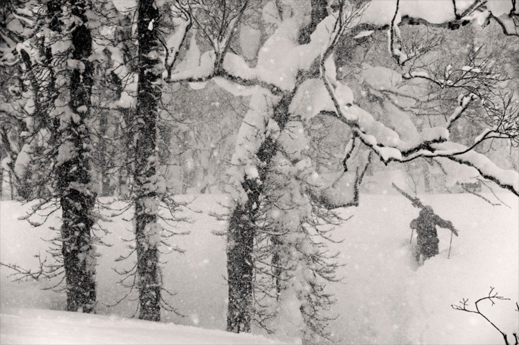 Located on the north island in Japan, Hokkaido, is famous for its massive snowfalls and great powder skiing. On this day we went cat skiing between Niseko and Sapporo and had the trees all to ourselves. Here Henrik Windstedt hikes up to hit a pillow line.