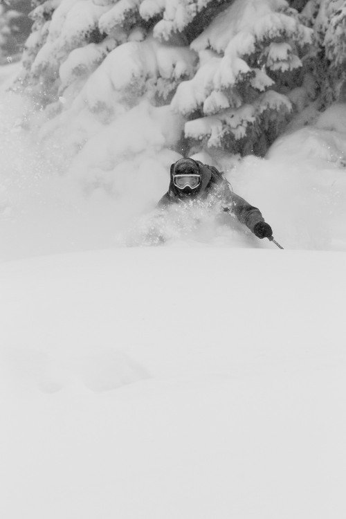 Skiing deep powder at Vail - ©Jeff Cricco