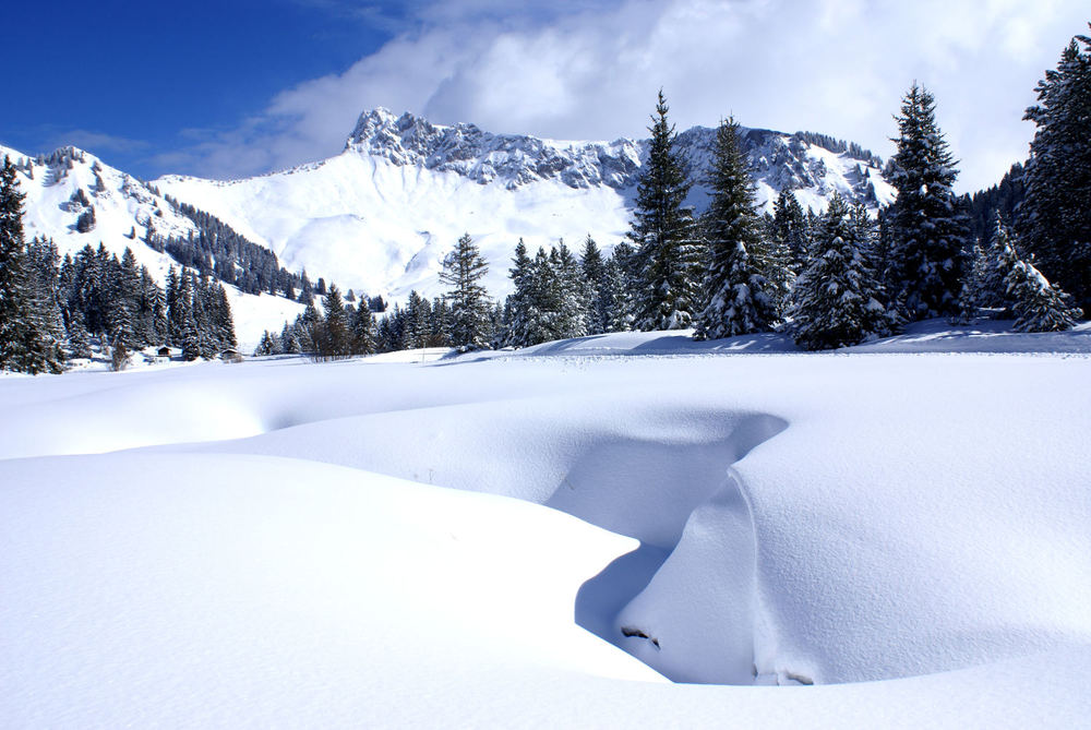 Sommand area on the snow - © OT de Praz de Lys - Sommand