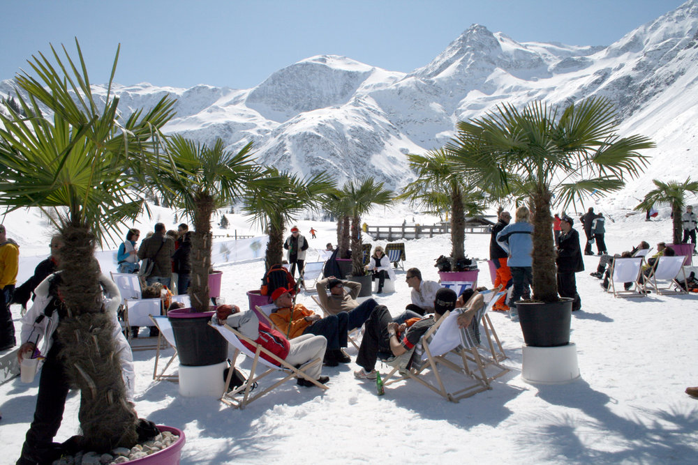 Event palms at the slopes in Dorfgastein