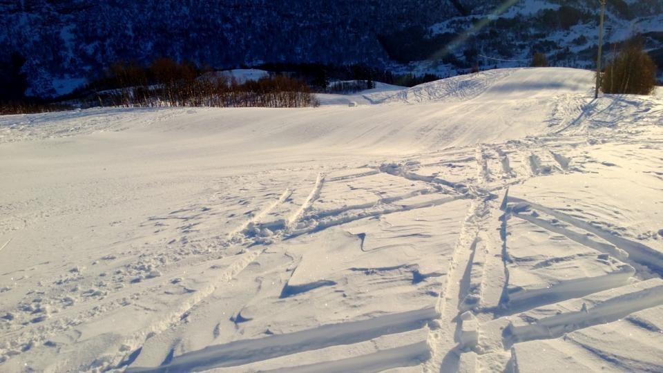 Sogndal Hodlekve