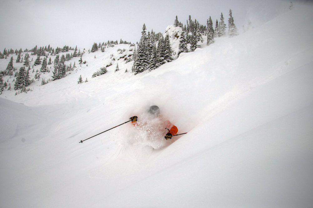 Powder in Eagle East at Marmot Basin. - © Marmot Basin