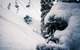 Snowbird - © Liam Doran