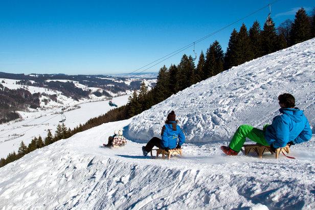 Alpsee Bergwelt - Naturrodelbahn